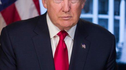 House Testimony Could Push Trump Impeachment Forward