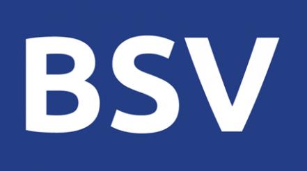Bitcoin SV: BSV Blockchain-as-a-Service (BaaS) for big data applications