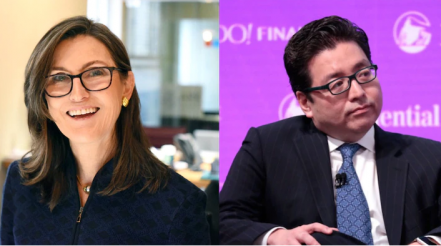 Cathie Wood agrees with Fundstrat's Tom Lee that a demographic boom led by millennials will drive the stock market higher for years to come