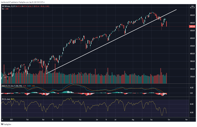 """""""Dead-Cat Bounce""""- More needed to think a low is In"""